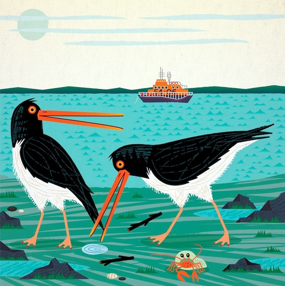 The Oystercatchers - Animal Art - Wildlife Print by Oliver Lake - iOTA iLLUSTRATiON
