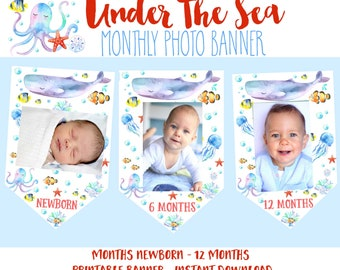 UNDER THE SEA Monthly Photo Banner Whale Fish Birthday Party Under The Sea First Milestone Month Photos Newborn