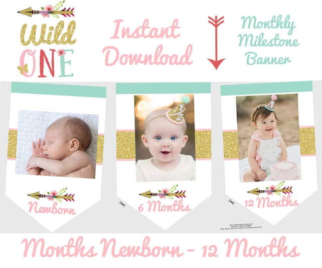 WILD ONE Birthday Party Decorations Wild One Month Photo Banner Monthly Arrow