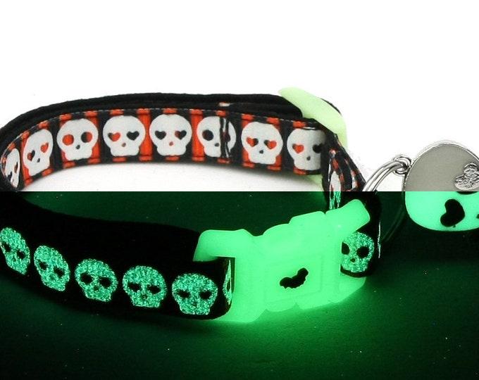 Skull Cat Collar - Glowing Skulls on Halloween Stripe - Small Cat / Kitten or Large Cat Collar - Glow in the Dark B25