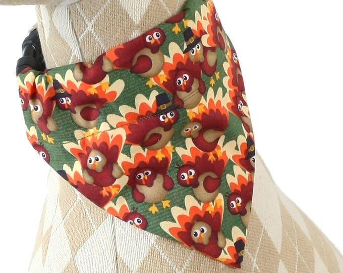 Pet Bandana - Pilgrim Turkeys on Green - Thanksgiving - Pet Scarf - Collar Cover - Turkey