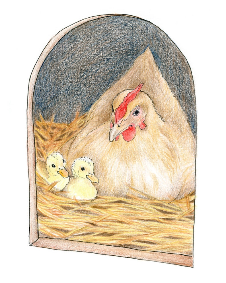 Foster Mother Hen with her Ducklings Farm Animal Drawing image 0
