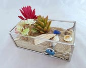 DIY Terrarium kit in stained glass box create your own