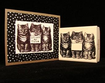 three cats w/ sign