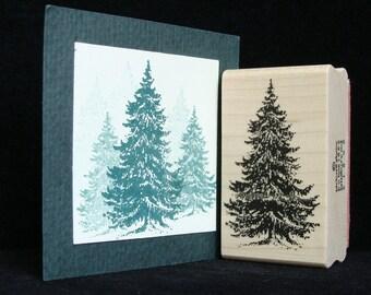 pine tree  (larger)