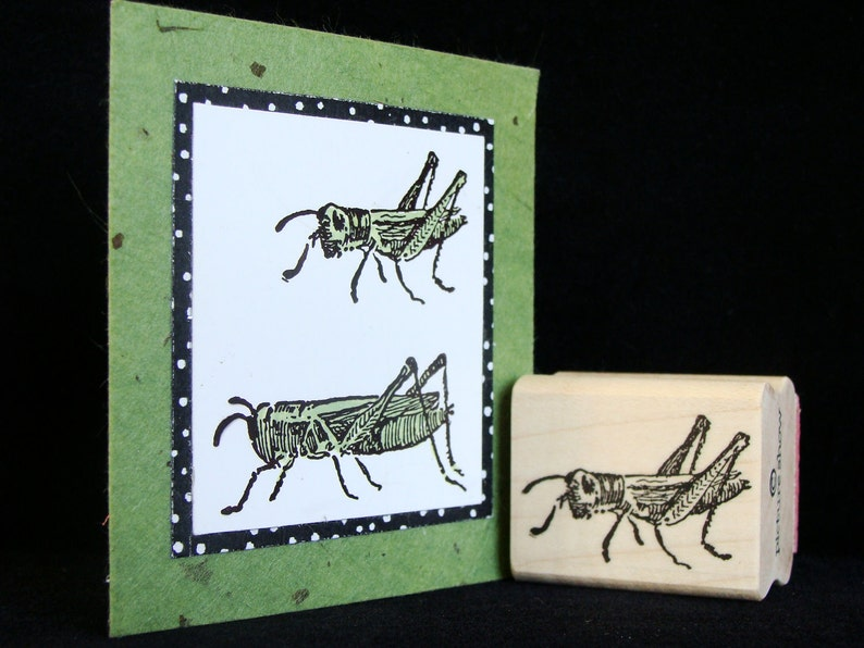 pictureshow rubber stamp grasshopper no 1 image 0