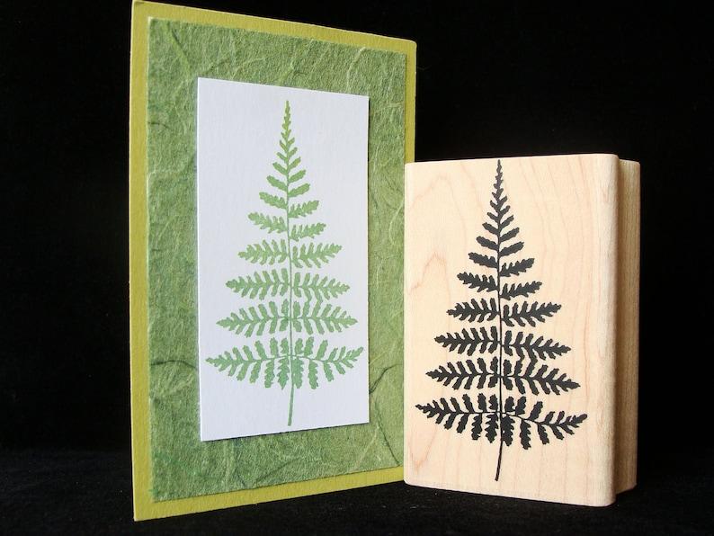 rubber stamp fern no 1 image 0