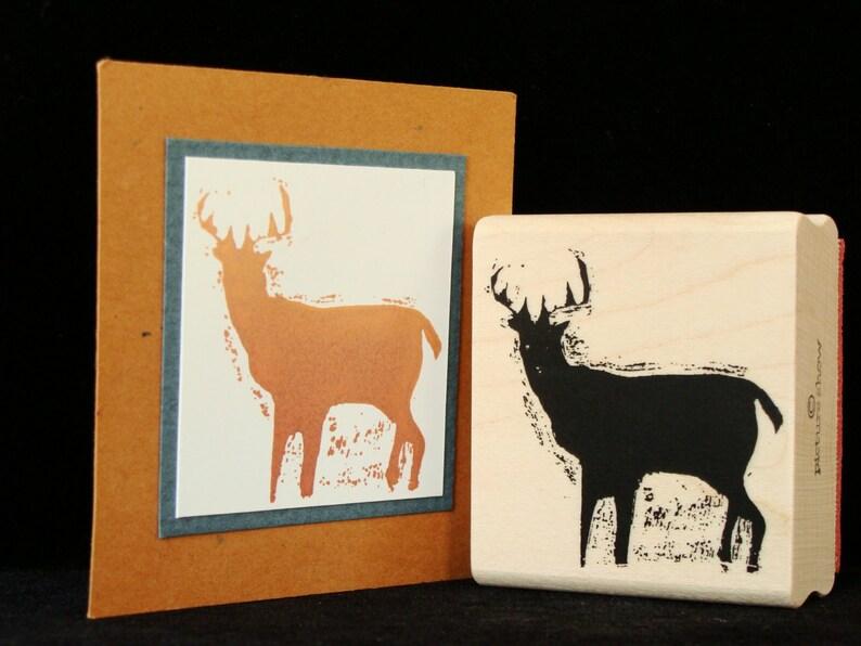 deer image 0