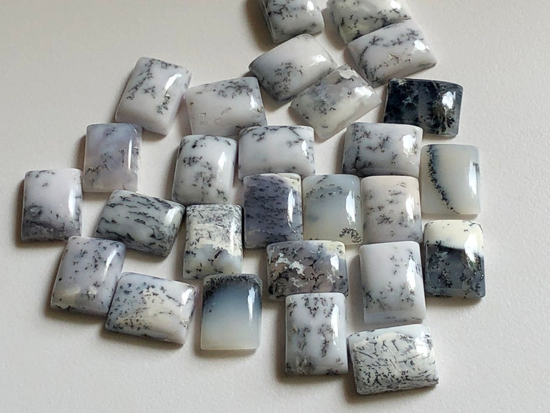 5 Pcs Dendrite Opal Rectangle Cabochon Loose Dendrite Gemstones ADG161 12x16mm Natural Dendrite Opal Plain Rectangle Flat Back Cabochons