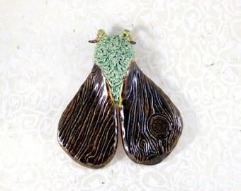 Woodland Moth