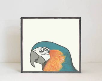 macaw bird tropical nursery prints- tropical decor- bird print- boho nursery- jungle nursery art block nursery decor redtilestudio