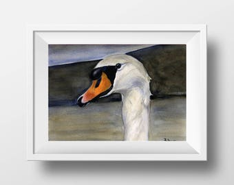 Swan - Original Watercolor Painting - 8 x 11 inches