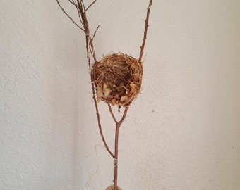 Hand woven nest on branch