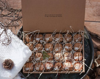 Walnut surprise advent calendar