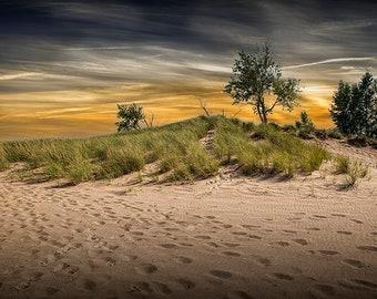 Ottawa Beach Sand Dune, Beach Trail at Sunset by Lake Michigan, Holland Michigan State Park, Great Lakes,Beach Grass, Seascape Photograph
