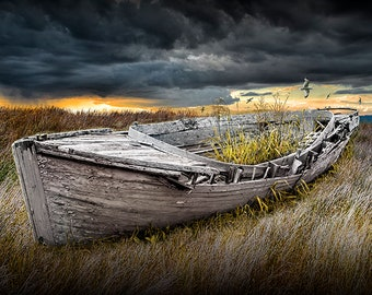 Beached Ship Wreck on the Shore, Boat gone to Seed, Nautical Sunset, Flying Sea Gull, Boat Photography, Cloudy Sunset Sky, Nautical Seascape