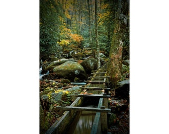 Water Flume in Autumn by the Roaring Fork Stream at Alfred Reagan's Tub Mill in the Smoky Mountain National Park No.FS2 Landscape Photograph