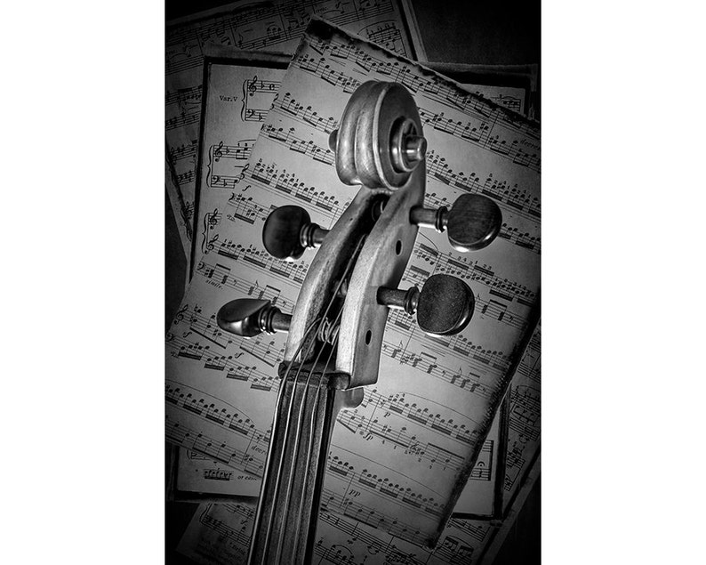 Rouleau VioloncelleInstrument De CordesPartitionsNoiramp; BlancSépiaFine ArtLa Classique MusiqueÀ Musique LUzjSVqpMG