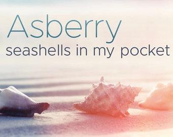 Seashells in My Pocket Compact Disc