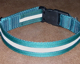 "1"" Glow-in-the-Dark Trimmed Dog Tag Collar"