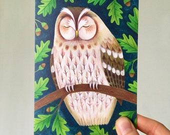 Tawny Owl | Greetings Card | British Wildlife Illustration | Bird Art Notecard A6