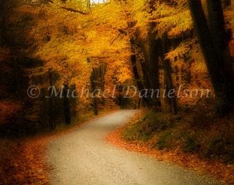 Autumn Foliage Fall Photograph 8x10