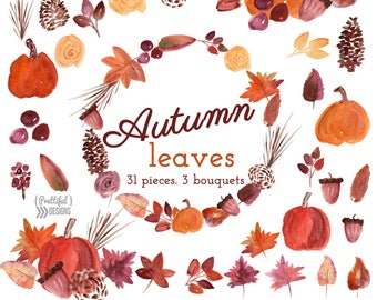 Fall Watercolor Flower Clip Art Commercial Use Autumn Leaves Watercolor Clipart