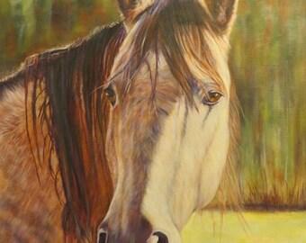 Horse Animal art portrait custom order oil painting