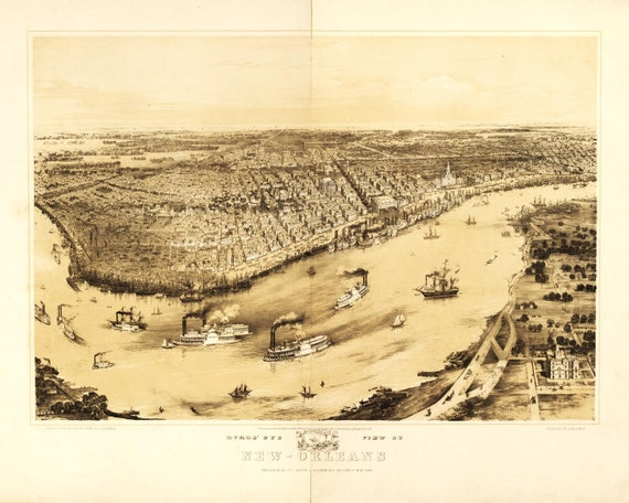 New Orleans Louisiana Birds Eye View Map 1851