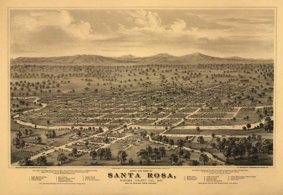 Antique Map Santa Rosa CA 1876