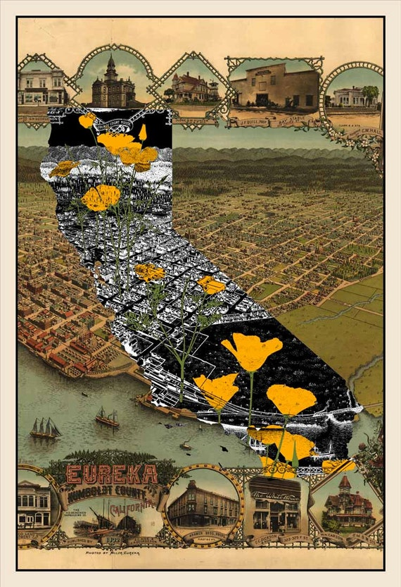 California Poppies - Antique Map Eureka CA