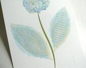 Ketubah - Hydrangea