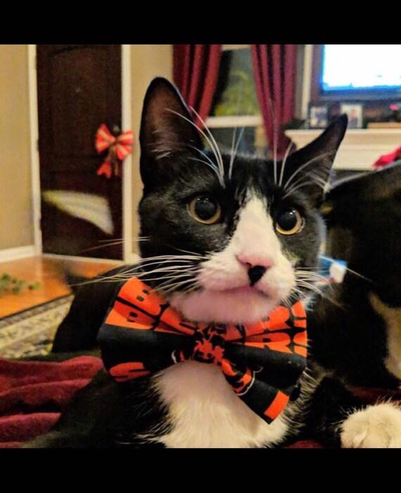833e8cdbf94 Chicago Bears Dog Cat Bow Tie | Etsy