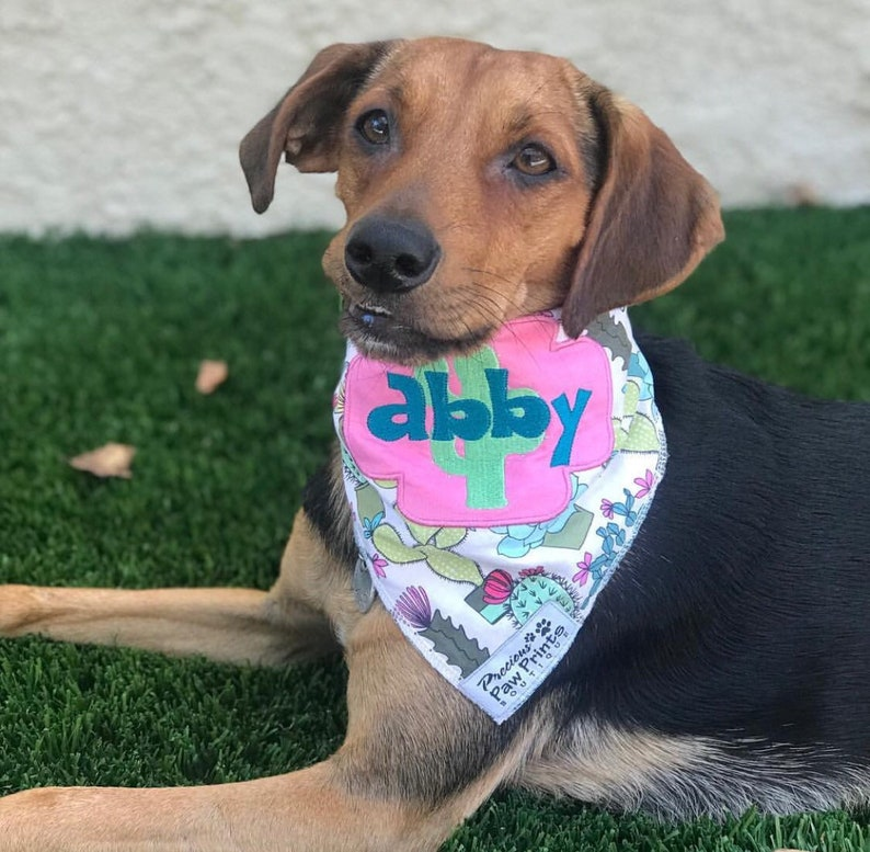 88c42b6ec97f Succa For You Dog Bandana Personalized made with name   Etsy