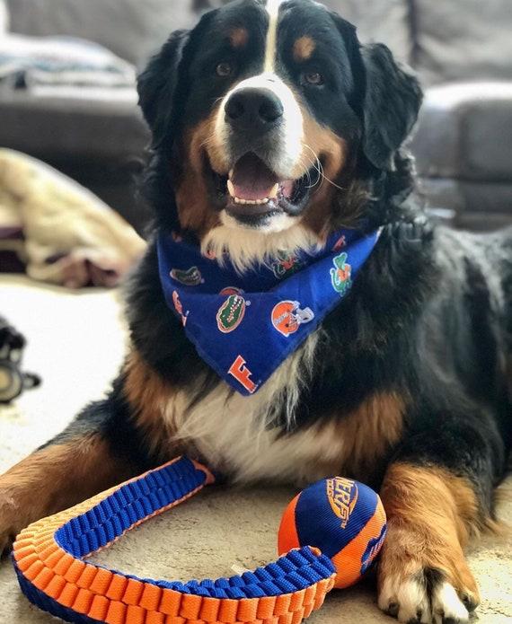 Pet Dog Bandanna Scarf UNIVERSITY OF FLORIDA GATORS  ***Made in USA***