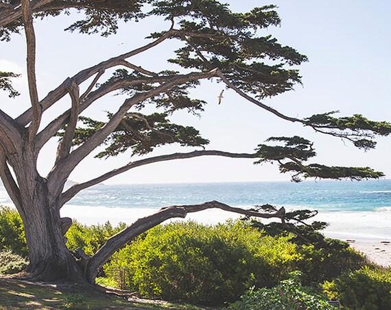 California Photo, Beach Print, Coastal Wall Art, Ocean Photography, Seascape