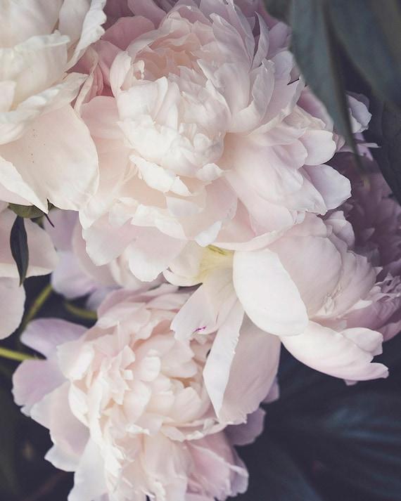 Peony Print, Flower Art, Pink Peonies Photo, Nursery Decor, Pastel Artwork, Botanical Photo