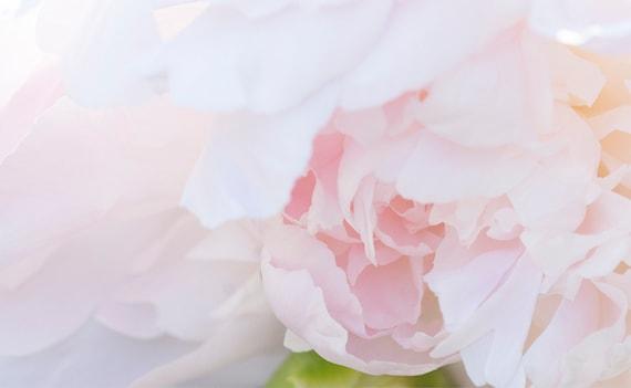 Blush Peony Print, Flower Art, Peonies Photo, Home Decor, Pastel Art, Botanical Photo, Pink Flower Print