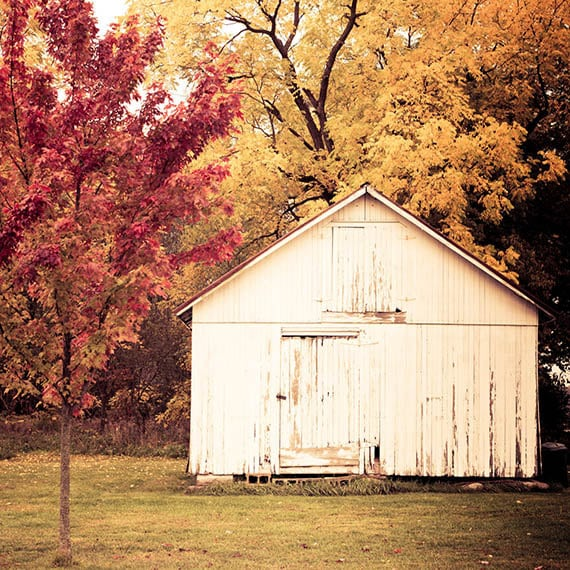 Fall Scene, Nature Photography, Fine Art Photography, Rustic, Countryside Print