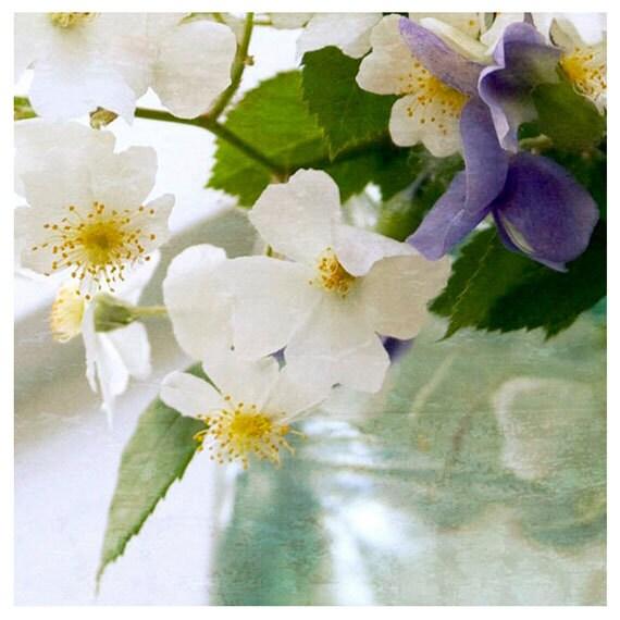 Fine Art Photography- Floral Photography-  Seaglass Colors- Pastels -8x8 print
