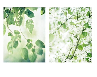 Green Wall Art, Print Set of Floral Photos, Spring Photography Prints, Home Decor Prints, Green and White Photography