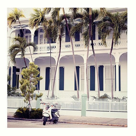 Coastal Wall Art, Beach Home Wall Decor, Photography Print, Vespa Print, Travel Photo, Palm Trees Photo