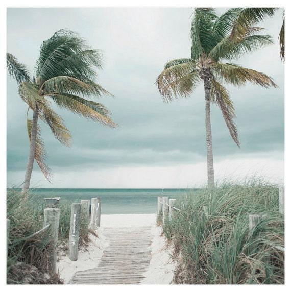 Beach Print, Palm Trees Photo, Coastal Home Decor, Seascape Wall Art, Seashore Print,