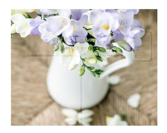 Art, Wall Decor, Photography Print, Spring Flower Pitcher Print, Paris Postcard, French Country, Pastel Print