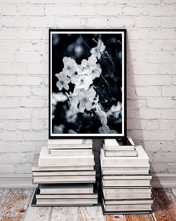 Nature Photography, Fine Art Photography, Wall Art, Flowers, Black and White, Fall Garden, Park