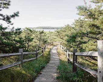 Cape Cod Photography, Nautical Art, Coastal Print, Blue Gray Green, Large Wall Art, Trail Print, Summer Decor