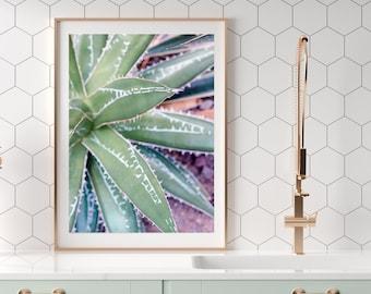 Desert Succulent Pastel Photography, Boho Home Decor, Southwest Wall Art, Abstract Succulent Print