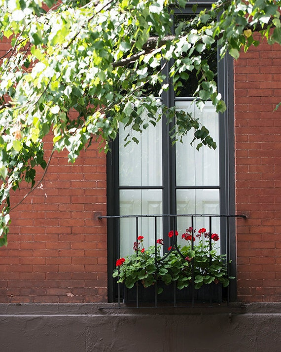 Window Box Photo, NYC Print, New York Art, Red Geraniums, Urban Home Decor, Wall Art, Summer Window Ptrint
