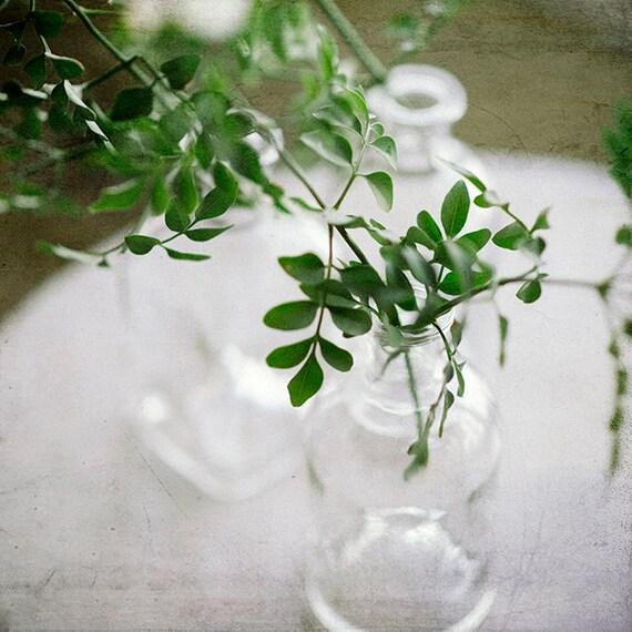 Botanical Photo, Nature Print, Wall Art, Photography Still life, Home Decor, Plant Print, Boho Home Decor, Fresh Spring Art