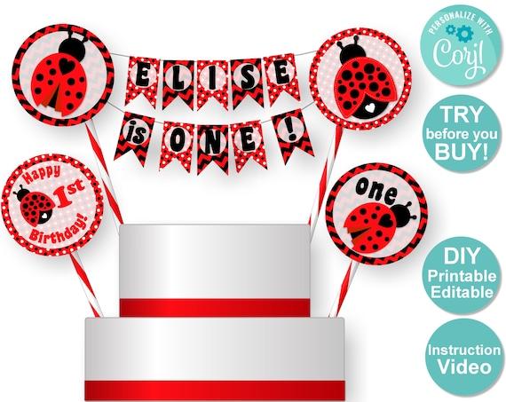 Phenomenal Ladybug Cake Topper Ladybug Birthday Cake Ladybug 1St Birthday Personalised Birthday Cards Cominlily Jamesorg